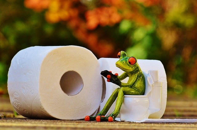 žába na wc