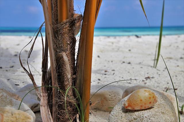 kameny na pláži