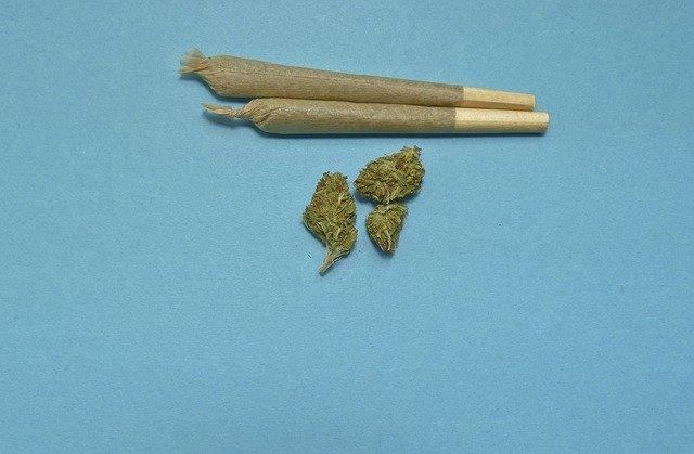 marihuana - jointy